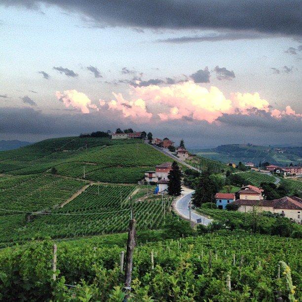 Piedmont Tours