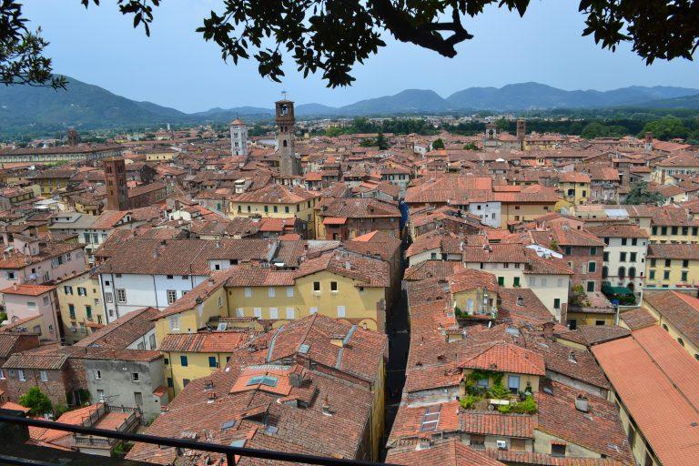 Tour de Lucca: VIew from Guinigi Tower