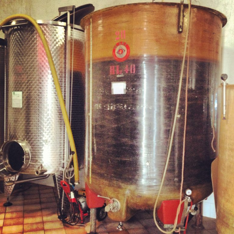 ABC Guide to Piemonte Wine: Dolcetto