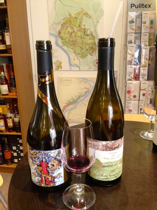 Tourist Guide to Drinking & Buying Wine in Avignon France