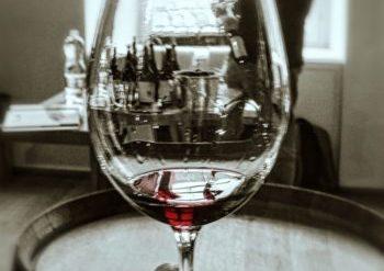 Wine Tasting Rooms in Barolo