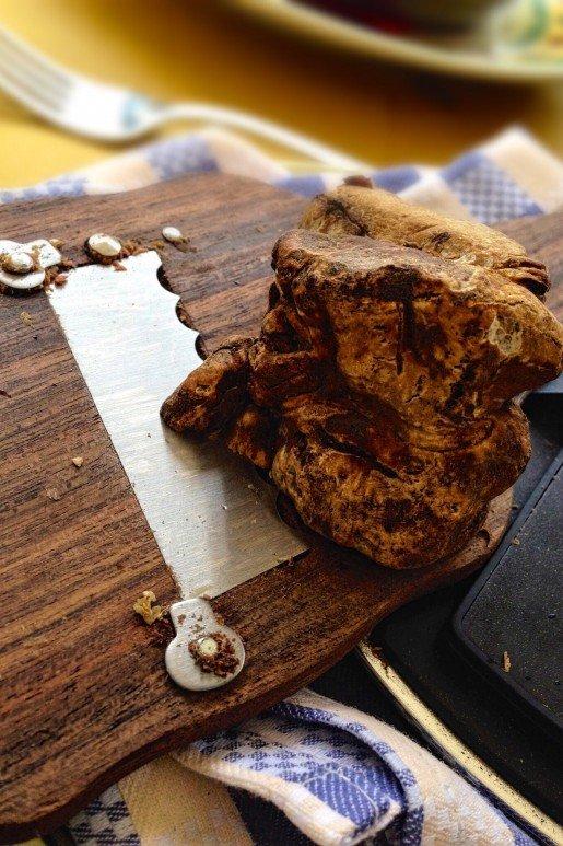 Alba White Truffle, Piedmont