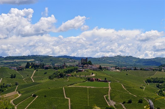 Day Trip From Turin To Barolo