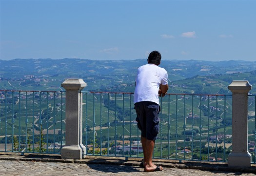 Barolo Day Trip From Turin