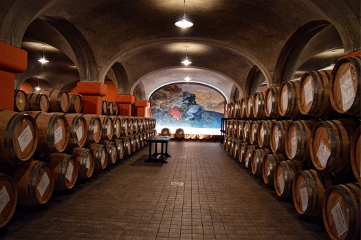 Tua Rita Tuscan Coast Wineries