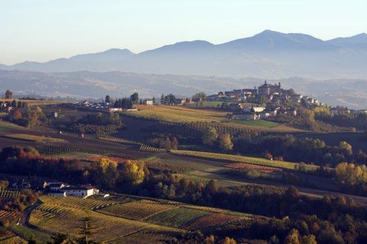 Novello landscape
